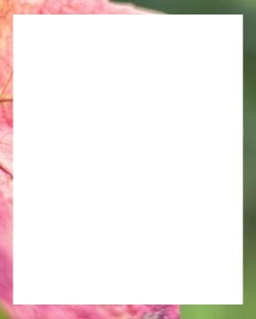 """33% Rabatt;Herbst-Angebot, bis zu; <strong class=""""sub-title"""">Auf Ausgewählte Artikel</strong> <p>Der Rabatt gilt auf ausgewählte Artikel bis zum 21. Dezember 2016 oder solange der Vorrat reicht. Gültig auf weinshop48.com</p>"""
